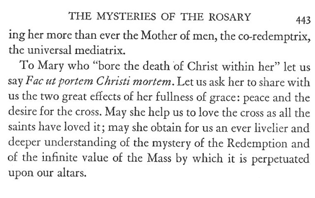 Mysteries of the Rosary 9