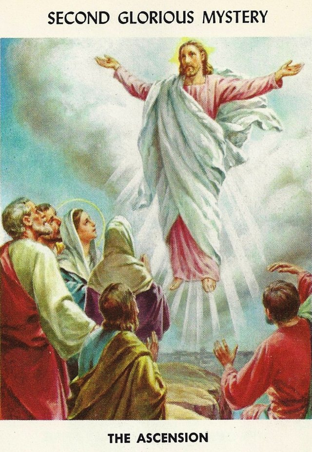 Rosary Mysteries 12