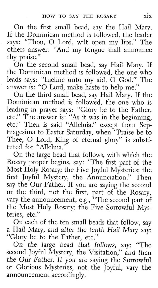 Introduction to Rosary 11