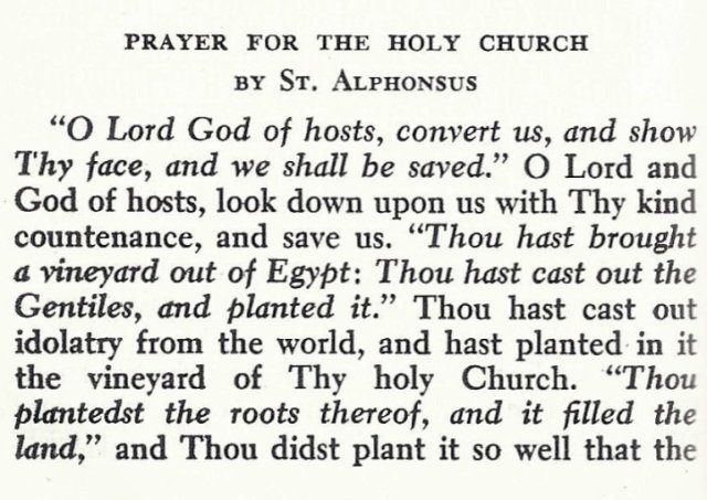 Prayer for Holy Church by St. Alphonsus 1