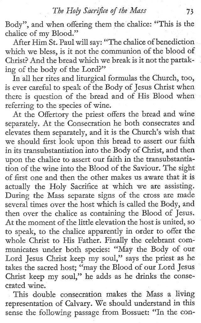 Holy Sacrifice of the Mass 5