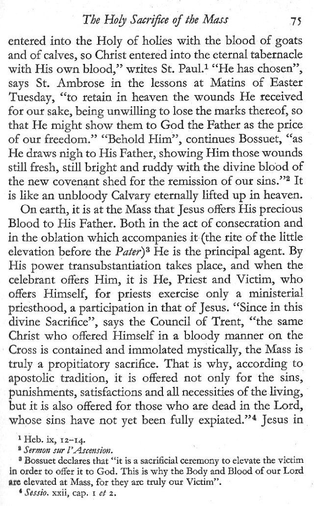 Holy Sacrifice of the Mass 7