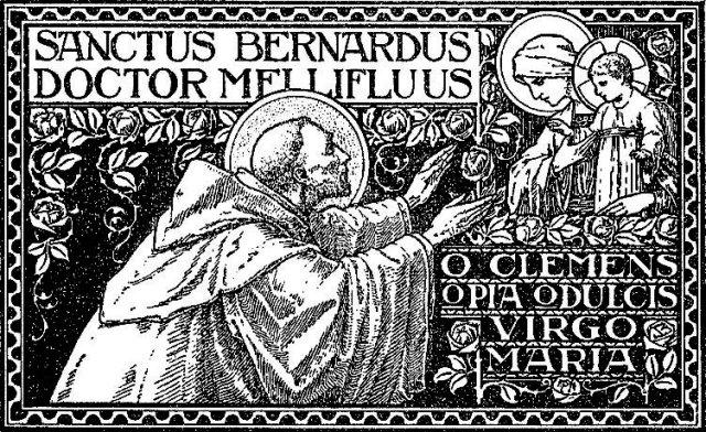 St. Bernard 2