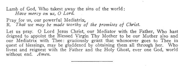 Litany of the BMV Mediatrix of All Graces 3