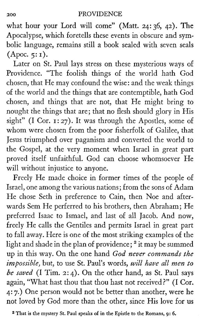 Providence according to the Gospel 10