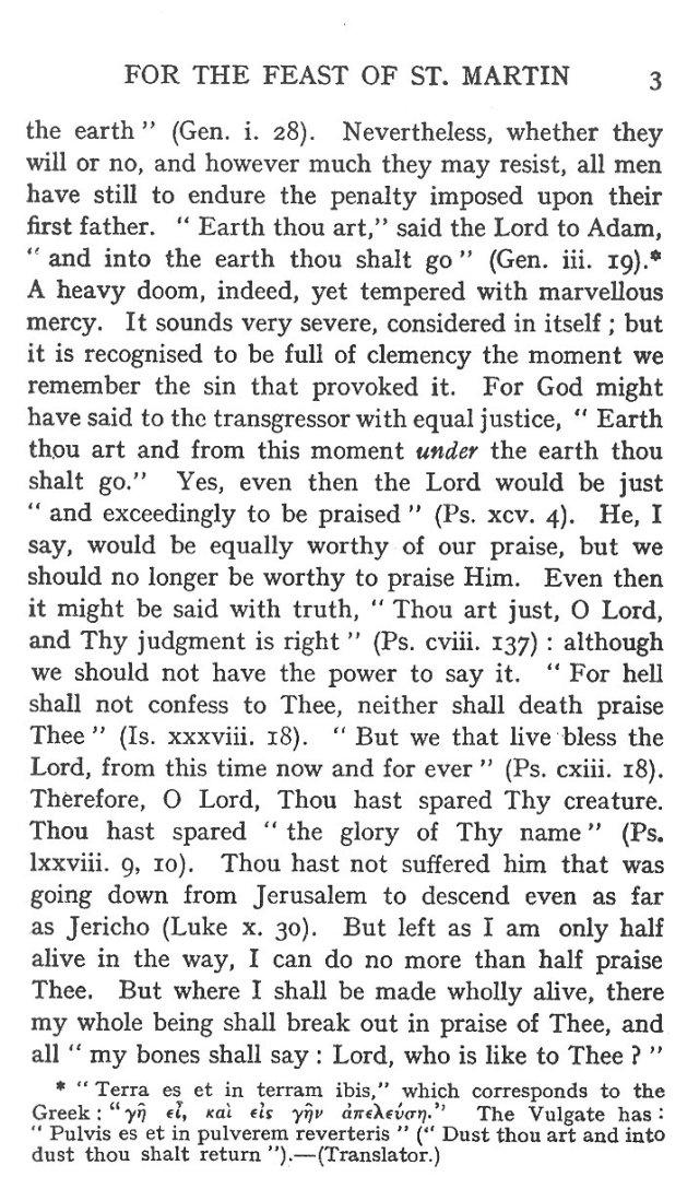 Sermon Feast St. Martin 3