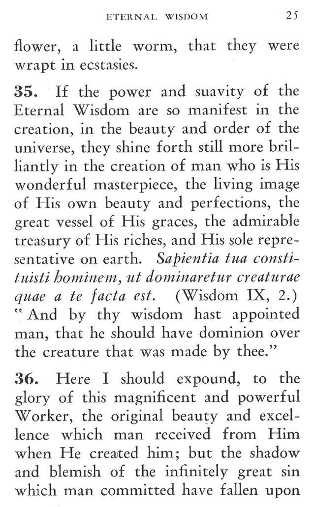 Power of Divine Wisdom in Creation 4