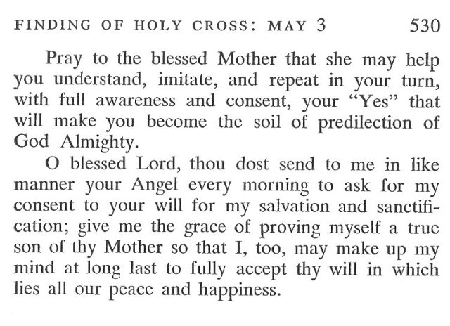 Annunciation Breviary Meditation 6